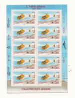 France Poste Aérienne 2007 - Feuillet F70a - Airmail