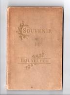 BELGIQUE . SOUVENIR DE BRUXELLES . MAISON R. STERN & Cie . LIVRET - Réf. N°7276 - - Voyages