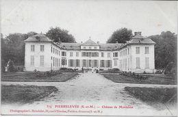 SEINE Et MARNE-PIERRELEVEE Château De Montebise-MO - Altri Comuni