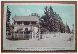 91 - MORSANG SUR ORGE - Parc Beauséjour - Avenue De La Princesse - Morsang Sur Orge