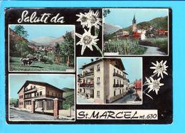 Cp  Cartes Postales - Saluti Da St Marcel - Italia