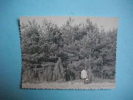 """PHOTOGRAPHIE  - Entre LE MESNIL ST LOUP Et PRUNAY -  10   -  """" Aux Champignons """"   -  8,5 X 11,6  Cms - 1962 -  AUBE - France"""