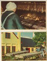 Smoking Of Herrings. Bornholm  2 Cards.   Denmark. S-1110 - Postcards
