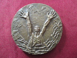 Médaille Libération Prisonniers Des Camps Delamarre - France