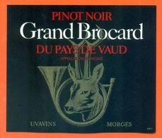 """étiquette De Vin Suisse Pinot Noir De Vaud """" Grand Brocard """" Uvavins à Morges- 75 Cl - Cor De Chasse - Chevreuil - Etiquettes"""