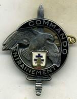 Insigne Entrainement Commando,DBLE___drago__matriculé - Armée De Terre