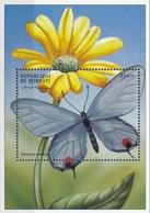 Djiboutie  Vlinders - Vlinders