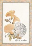 Carte Champignon Hydne Pied De Mouton - Hongos