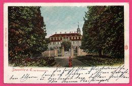 Seusslitz A. E. Bei Grossenhain - Seusslitz Bei Großenhain - Animée - PAUL FINK - 1900 - Auto Chrom - Diesbar-Seusslitz