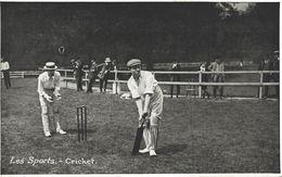 LES SPORTS CICKET - Cricket