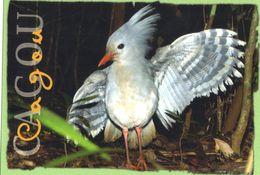 Le  CAGOU ( Emblème De LaNouvelle Calédonie )  Utilisée En 2005. - Nouvelle Calédonie