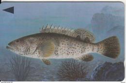 BAHRAIN(GPT) - Fish Of Bahrain/Grouper, CN : 40BAHJ/B(0 With Barred), Used - Bahrain