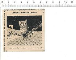 2 Scans Presse 1910 Humour Oiseau Hibou Perché Owl Nourriture Souris Rat Mulot  / Transport Fiacre Sapin 51C2 - Alte Papiere