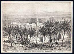 1876  --  ALGERIE  L OASIS D EL AMRI   3N888 - Unclassified