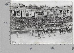 CARTOLINA VG FRANCIA - Courses De Taureaux Aux Arenes De NIMES - Le PASEO - 10 X 15 - ANN. 1958 - Nîmes