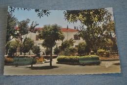 Saint Arnaud   Gendarmerie Nationale - Algiers