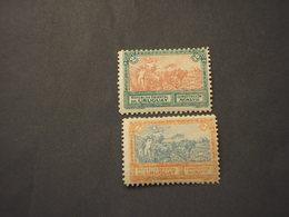 PARAGUAY - 1918 QUADRO COSTITUZIONE  2 VALORI (discreta Qualità) - NUOVI(++) - Paraguay
