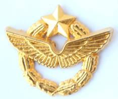 Pin's Doré Or Fin BREVET DE PILOTE D'avion -  Ballard - H005 - Armee