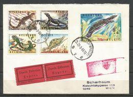 1965 - COB N° 1344 à 1348 Oblitérés (o) Sur BELLE LETTRE EXPRES Vers L'Autriche - Belgique