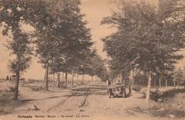 Hofstade  Baden , Bains  ( Zemst ), De Dreef , La Drève - Zemst