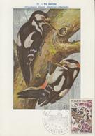Carte  Maximum  1er  Jour   MONACO    Pic  Epeiche   1962 - Climbing Birds