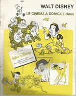 FILM - OFFICE : WALT DISNEY , LE CINEMA A DOMICILE - Other Collections