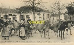 85 St Gilles Croix De Vie, Paludiers Venant De La Douane Pour Acquitter Les Droits Sur Le Sel, Collection Boutain N° 246 - Saint Gilles Croix De Vie