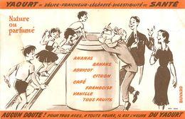 VP-GF.18-217 : BUVARD. YOURT = SANTE. - Buvards, Protège-cahiers Illustrés