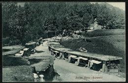 RB 1195 - Early Postcard - Barian Bazar In Summer - Murree Pakistan Ex India - Pakistan