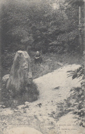 Meudon La Forêt 92 - Bois De Clamart - La Pierre Aux Moines - Meudon