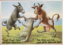 Grote Kaart Grand Format Ezel Donkey Ane Esel Burro Asino Cow Vache Koe Sheep Mouton Schaap Humor Humour - Burros