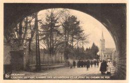 Beauraing - CPA - L'Entrée Du Parc, L'arbre Des Apparitions Et Le Pont - Beauraing
