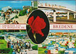 Grote Kaart Grand Format Bredene Groeten Uit 1973 - Bredene