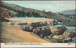 Minerva Terrace, Yellowstone National Park, Wyoming, C.1905-10 - IPC&N Co Postcard - Yellowstone