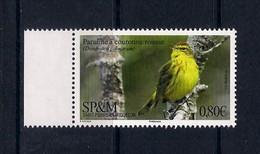 SP&M (2018) Uccelli/birds/oiseaux: Palm Warbler (Setophaga Palmarum) - Singbird; Single Stamp (MNH) - As Scan - Sparrows