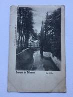 SOUVENIR DE TIRLEMONT «LA GÈTHE «Panorama (1900)Édit NELS  Série 37 / Nº 17 . - Tienen