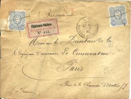 Rec.de CHATEAU-SALINS (Moselle) Annexé à L'Empire Allemand Pour PARIS -1882 - - Germany