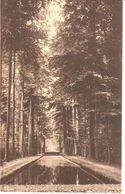 Beloeil - CPA - Le Parc Et Les Miroirs - Beloeil