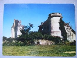 MAYET / CHAATEAU FORT DES SALLES / BELLE CARTE PHOTO / 1991 - Mayet