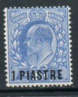 British Levant 1906 1p  Edward VII Issue #13  MNH - British Levant