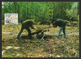 Portugal Abattage Des Arbres Avec  Scie Et  Hache Menuiserie Carte Maximum 1985 Tree Cut Saw And Ax  Carpentry Maxicard - Árboles