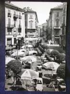PIEMONTE -ALESSANDRIA -TRAM BUS  -F.G. LOTTO N°637 - Alessandria