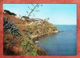 Isola D'Elba, Porto Azzurro, EF Fresko Kopf, Nach Hamburg (47419) - Livorno