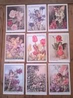 Lot De 9 Cartes Postales / Illustratrice Cicely Mary BARKER - Contemporain (à Partir De 1950)
