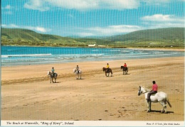 """Irlanda The Beach At Waterville, """"King Of Kerry"""", Co. Kerry, Ireland - Kerry"""