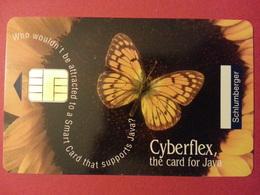 Test Schlumberger Cyberflex Java Papillon Avec Puce Et Numéros Au Verso Demo - Phonecards