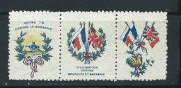 VIGNETTE PATRIOTIQUE époque DELANDRE - Coq Gaulois  - Propagande  WWI WW1 Cinderella Poster Stamp 1914 1918 Poultry - Commemorative Labels
