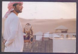 UAE United Arab Emirates SHARJAH Stamp Exhibition 2017, Picture Postcard Used - United Arab Emirates
