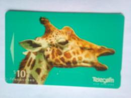 311CD Giraffe - New Zealand