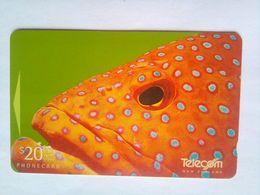 311DO Fish - New Zealand